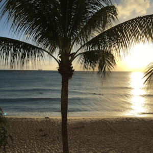 5 hidden gems to discover in Barbados